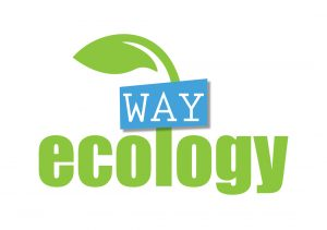Ecology Way Logo
